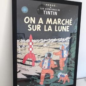 Rigtig fin Tintin plakat i sort ramme   Kan sælges både med og uden ramme   55x75