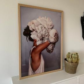 50x70 cm plakat + ramme