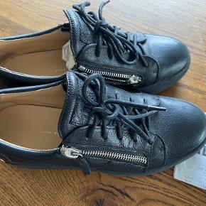 Guiseppe Zanotti sko