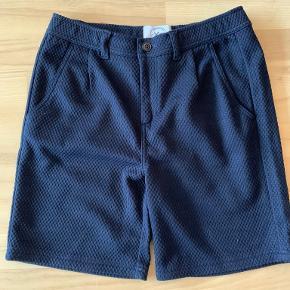 Kronstadt shorts
