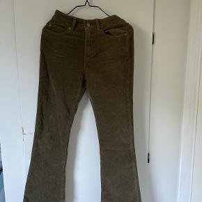 Ivy bukser