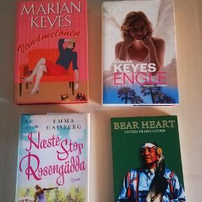 Bøger 30 kr pr stk