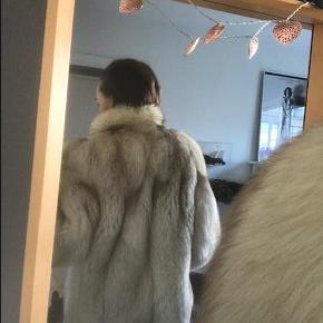 Smuk, smuk pels af ræv som jeg begræder at måtte sælge, men jeg må indse, at den bliver for stor til mig, da jeg er en str. 34. Passer bedst en 36 eller 38.  Den er varm og fin, men foret har fået to pletter indvendigt. Det ses dog ikke, når den er på, heller ikke når den står åben, selvom den ene sidder ved jakkeåbningen, Den lukkes med skjulte hægter (der fungerer perfekt og ikke smutter op af sig selv ved brug) og måler 70 cm fra øverst (ekskl. kraven) til nederst og 40 cm henover brystet, når den er lukket. Den måler 45 cm fra skulder til skulder, og ærmet måler 65 cm fra skulder og ned og 38 cm på korteste sted.  Pelsen er af en fantastisk kvalitet. Foret er af grå satin. Man går ikke ubemærket hen, når man har den på!  Mindsteprisen er 3000 pp. Bemærk: - Jeg bytter ikke. - Jeg har ikke mulighed for at tage yderligere billeder. - Jeg kan desværre ikke imødekomme ønsker om prøvning. Den kan afhentes eller sendes på købers regning.