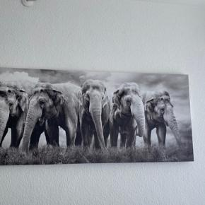 """Sælger denne flotte elefant """"maleri"""" grundet flyt."""
