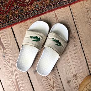 LACOSTE andre sko