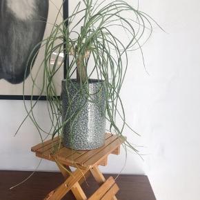 Potteplanteopsats i træ. Skøn til at få dine planter løftet, så det giver noget andet til indretningen. H23 B21 L25.