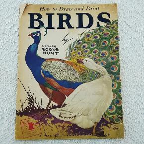 Gammel Paint and Draw tegne/male hæfte. Med skønne fugle motiver og anvisninger