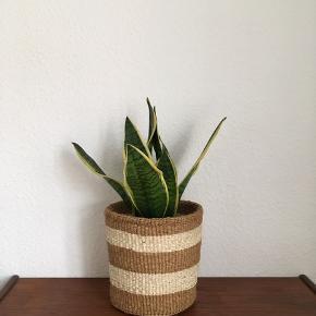 Sisalkurv fra Kenya. Perfekt til en plante, strikketøj, frugt eller hvad som helst. Diameter: 22 cm, højde: 22 cm. Prisen er fast.