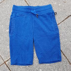 flotte Molo Shorts men har en rep. ved lomme se billede
