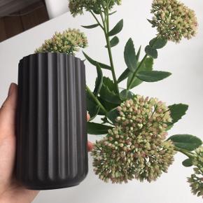 """Lyngby Porcelæn """"Lyngbyvasen"""" i farven sort. Vasen måler H: 12 cm. 🦝 Sælges som sæt eller enkeltvis.  Byd gerne kan både afhentes i Århus C og sendes på købers regning 📮✉️"""