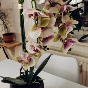 Flot stor ( kunstig ) orkidé.  Højde ca 58 cm  Byd gerne🌸