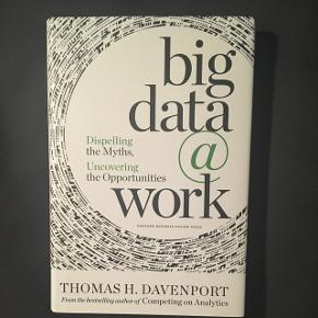 Big data @work af Thomas H. Davenport   BYD