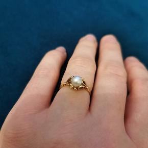Smuk vintage ring i 14 kt. guld med en ægte saltvandsperle. Fatninger i et filigran mønster der giver ringen sjæl og et udtryk man sjældent ser. Str. 52  Nyrenoveret med en ny perle og polering af skinnen, så den fremstår som ny. Ny pris 3500 kr. Sælges for 2000 kr. Kan sendes med gls uden omdeling til 39 kr.