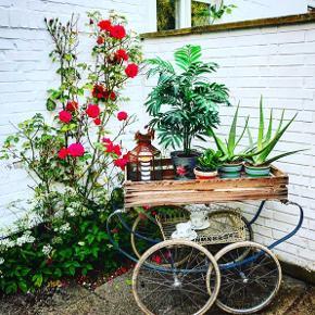 Mit første diy sommerprojekt til terrassen eller haven. Kan både anvendes som plantebakkebord eller som kaffe/bar/serveringsvogn. Til at sætte velkomstdrinks på og byde ind til fest :)   Kun fantasien sætter grænser.