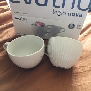 Eva Trio Kop