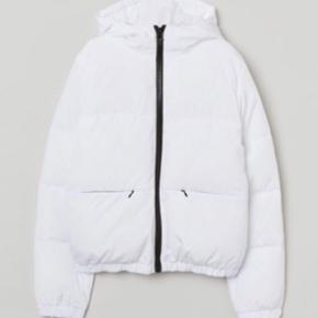 Brugt 2 gange , sælger det, fordi jeg har for mange jakker.str s... Fri fragt I dag