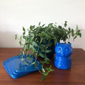 Sjov plast spareugle fra Provinsbanken 👌🏻✨✨ Pris 75,- kr. Skønne retro Rosti smørrebræt i blå plast 💙💙💙 Samlet pris 75,- kr.