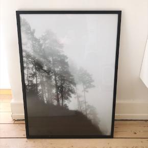 Helt ny fotoplakat af Anne Østenby i sort egetræsramme.  Mål: 70x100  Nypris med ramme: 950. Kan hentes i 9000 Aalborg.