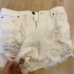 Nelly shorts