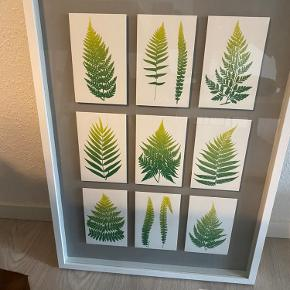 Ikea olunda billede udgået model