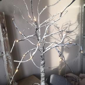 Lystræ  70 cm høj  Nypris 380kr