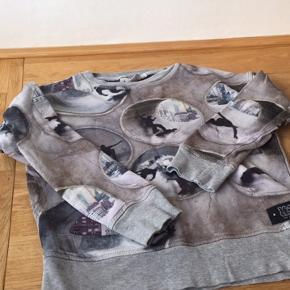 Sejt Molo Sweatshirt med skater print i str 7 år