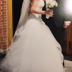 Pronovias Galla & bryllup