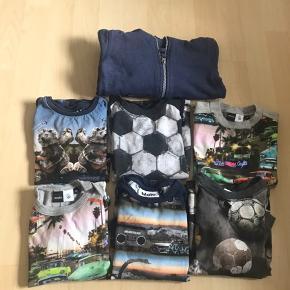 5 lang ærmet bluser 1 kort ærmet t-shirt (øverst højre - med biler) 1 hætte trøje med lynlås  Svag plet på langærmet bluse med biler