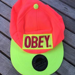 Obey hue & hat