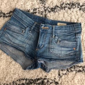 Søde shorts :)