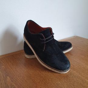 Pointer sko