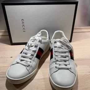 Gucci sneakers brugt MEGET få gange. Sælges da jeg ikke får dem brugt. Svarer til en str. 38.  Jeg har kvitteringer, æske osv.  NYPRIS 3500