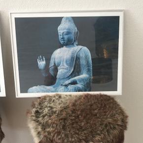 2 buddhistiske billeder i aluramme. Sælges samlet. Kan afhentes i nærheden af Vallensbæk  Prisen er fast