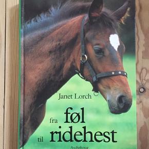 Fra føl til ridehest af Janet Lorch.