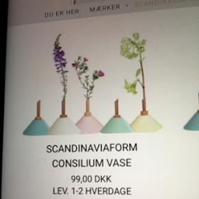 Scandinaviaform  Consulting vase blå🌺
