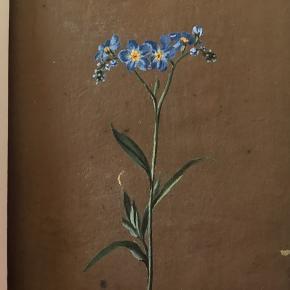 Smuk miniature akvarel. Blomst i blå, gul og grøn på brun baggrund. Malet på kraftigt brunt papir. 7 x 10,5 cm. Passepartouten måler 18 x 18 og kan skæres til. Rigtig fin stand - et par små lyse områder i baggrundsfarven.   Jeg sælger også bl.a. vintage tøj  + unikke ting til hjemmet, og jeg giver mængderabat.
