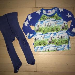 74 molo tøjpakke tøjpakker bluse trøje Strømpebukser marineblå hund