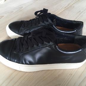 Royal Republic sneakers