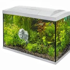 SuperFish start 70 L tropical akvariesæt, hvid  Akvarium med LED lys, pumpe, varmelegeme, termometer og net. Plastik planter, sand og grotter medfølger også, hvis ønsket   Byd gerne