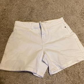 JDY shorts