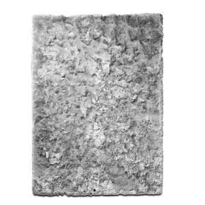 Ryatæppe fra BoConcept med skinnende lang luv kombineret med et luksuriøst udtryk. Ca. 2 år gammelt og i generel fin stand og absolut uden pletter. Få brugsspor. Det første billede af tæppet er fra BoConcepts hjemmeside, resten af billederne er af tæppet der er til salg. Luvhøjde: 5,5 cm Farve: Jerngrå Nypris ca. 11.500,-