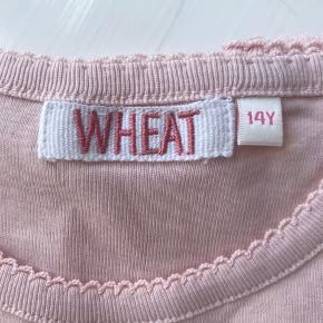 Wheat overdel
