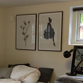 Plakater i målene 50x70 cm. Kan købes hver for sig og sammen - dog uden ramme. Skriv endelig for flere billeder 😉 byd!