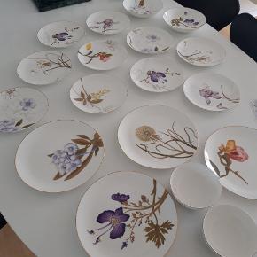 Royal Copenhagen Flora Nogle enkelte af delene er brugt et par gange og vasket op i hånden :) Alle 19 dele er købt i 2019. Der er emmalys brudgaranti på på 9 dele og værsgo brudgaranti på 1 del.  22 cm tallerkener (10 stk) 2 x iris 1 x magnolia 2 x stedmoderblomst 2 x rhododendron 2 x mælkebøtte 1 x guldregn  50 cl skål (2 stk.) 1 x Magnolia 1 x Mælkebøtte  21 cm dyb tallerken (3 stk.) 1 x rododendron 1 x mælkebøtte 1 x stedmoderblomst  27cm tallerken (4 stk.) 1 x magnolia 1 x mælkebøtte 1 x stedmoderblomst 1 x rododendron