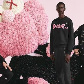 Super fed Dior X kaws sweat fra deres sidste collab
