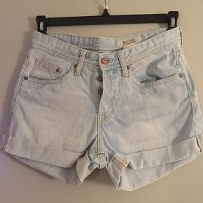 Fede cowboy shorts Fra Boyfriends