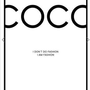 COCO plakat uden ramme  20x40cm pris:100kr
