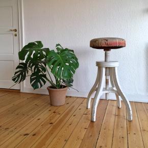 """Super dekorativ stor gammel drejestol i solidt træ, og med lædersæde sælges. Den har masser af fin patina og et unikt udseende på sædet, da den i sin tid har været brugt i et atelier/ malerværksted.  Drejefunktionen fungerer perfekt.  Mål: Højde når den er drejet helt ned- 74 cm. Når den er drejet helt op- 97 cm.  Diameter på sæde 40 cm.  (For at give en fornemmelse af dens størrelse, er den placeret ved siden af en stor Monstera plante, der måler 85 cm. fra gulv og op.) På foto nr. 1 og 2 ses stolen hvor den er drejet til """"midt i mellem"""". På nr. 6 kan den ses drejet helt ned og op. Ekstra billede af sædet findes i kommentarfeltet.  Pris: 750,-kr.  Er til afhentning.  Se også mine mange andre ting og sager😊- klik på mit navn for at se alle mine ting."""