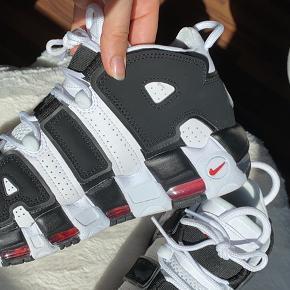 Sælger mine Nike Air Uptempo sko. De er aldrig brugt og har bare siddet i kassen. Ikke de nemmeste sko at få fat i til god pris heller! Prisen er fast så byd ikke😉