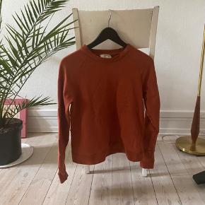 Sweater fra Baum und Pffrdgarten i rust orange farve, pleje at være gylden tiger på forsiden, men den blevet vasket af (ses på bilde nr2). Stadig meget blod og dejlig at have på, sælges fordi den er lidt for lille til mig.